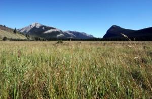 British Columbia, Alberta and Saskatchewan